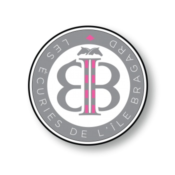 Logo ilebragard 6